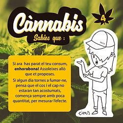 cannabis insta TOLERANCIA4.jpg