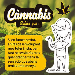 cannabis insta TOLERANCIA1.jpg
