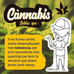 cannabis insta TOLERANCIA1.jpg