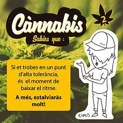cannabis insta TOLERANCIA2.jpg