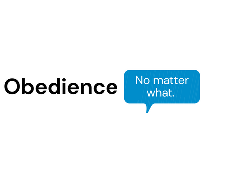 Obedience. No matter what. Wawa Jafta
