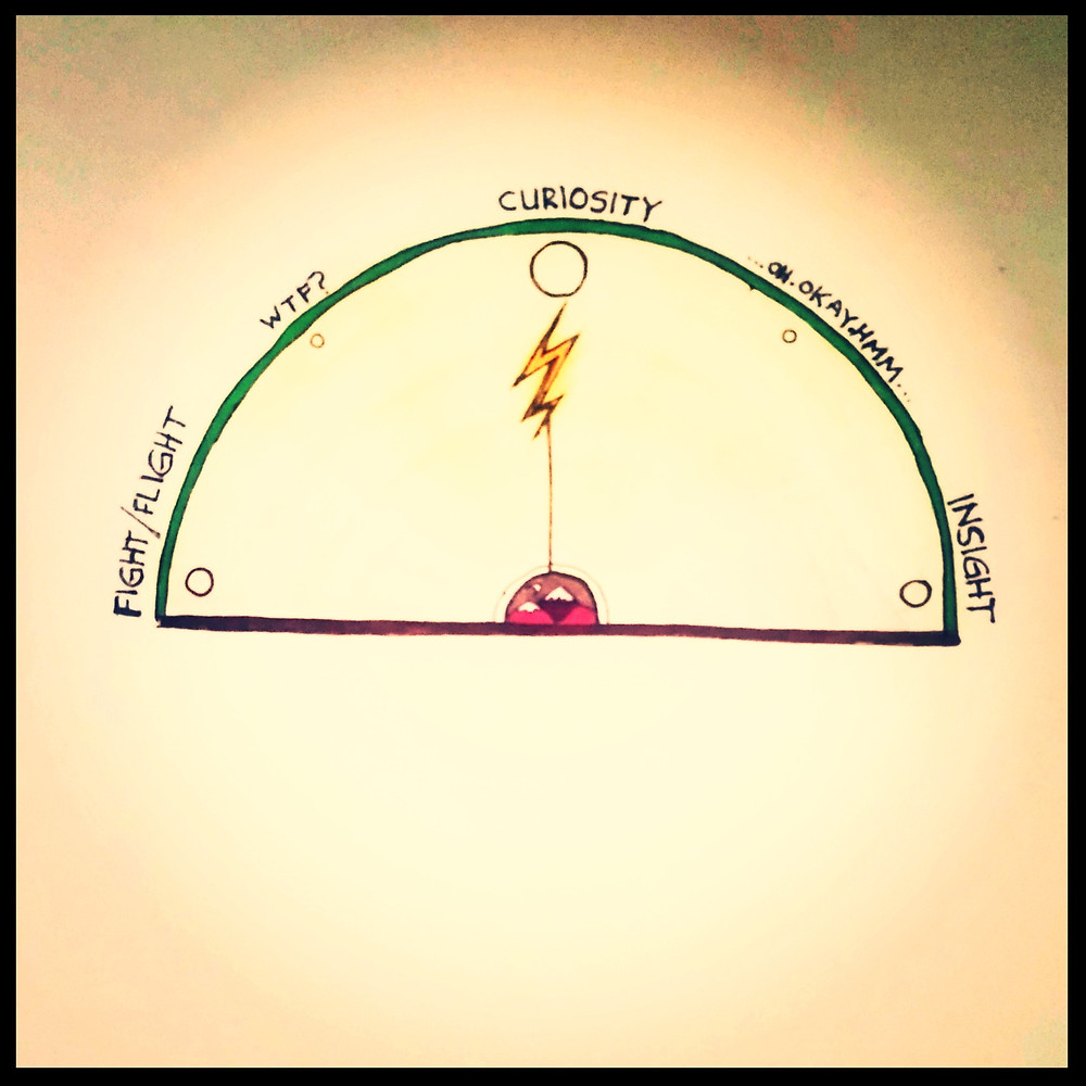 Life-o-meter: From fight/flight to insight