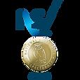 nsi-gold-logo.png