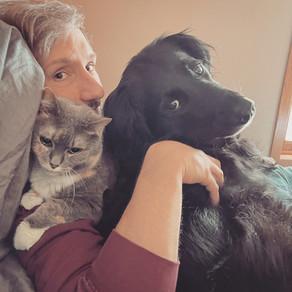 Sunday Pet Pile
