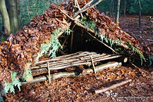 wilderness survival camp, temporary shelter