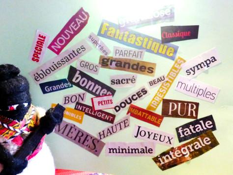 Aimez-vous les adjectifs ?