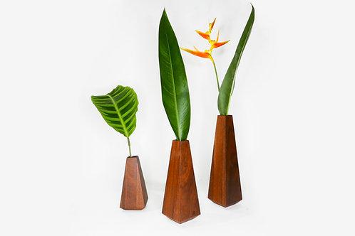 Picos   Conjunto de Vasos