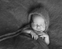 Newborn Photoshoots Northamptonshire