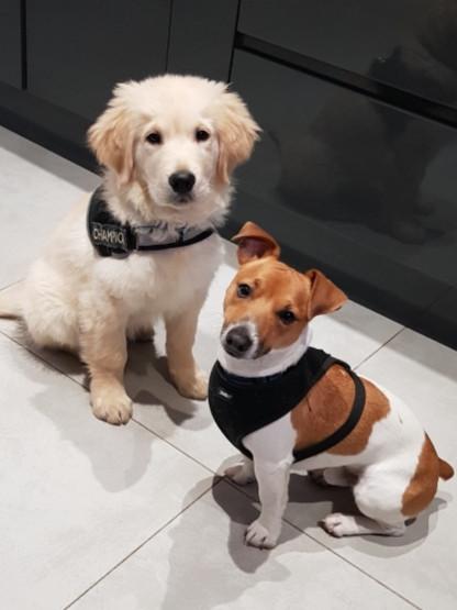 Oscar et Poppeye