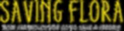SF_title_tagline.png