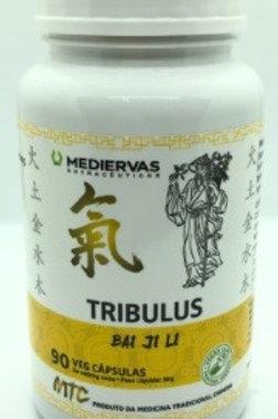TRIBULUS MEDIERVAS