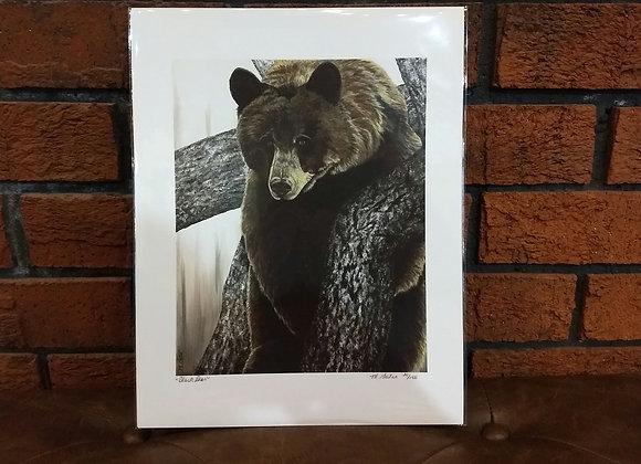 """Black Bear"" art print"