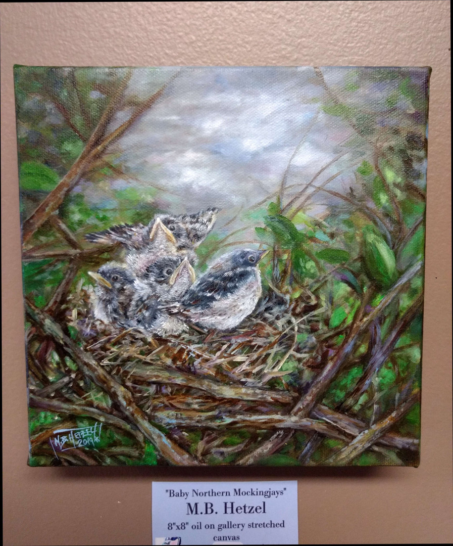 """Northern Mockingbirds"" oil on gallery c"