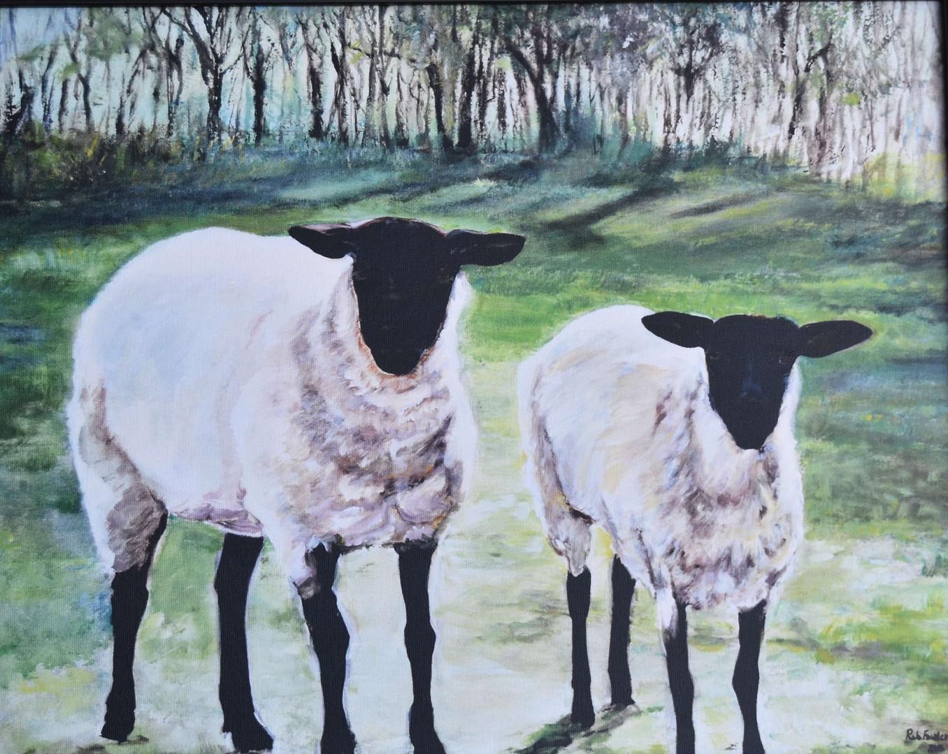 """Sheep"" acrylic"