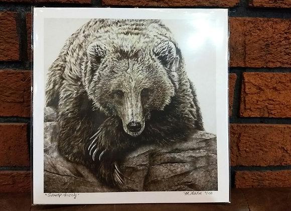 Silvertip Grizzly art print
