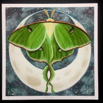 lunar moth Lin Buckner