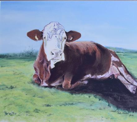"""Heifer"" acrylic"