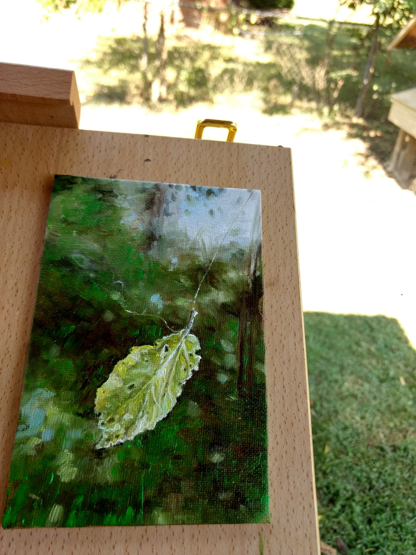 """Leaf caught in a Web 4""""x6"""" oil (availabl"""