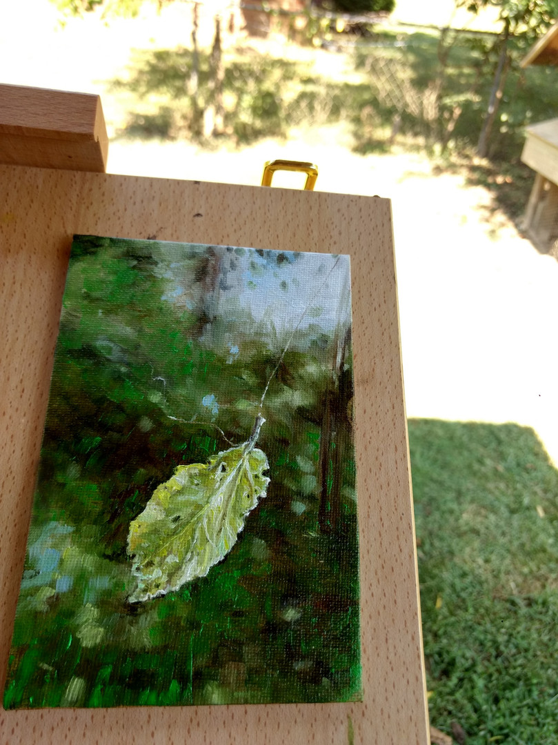"Leaf caught in a Web 4""x6"" oil (availabl"