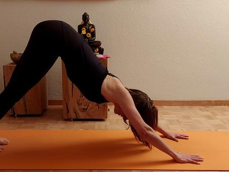 Biken und Yoga – Deine Übungen, Teil 2