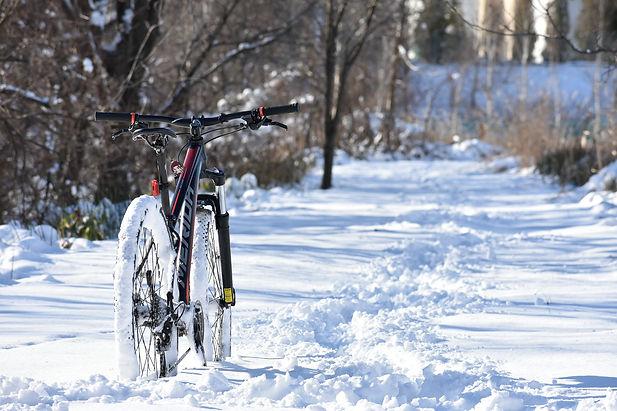 bike-5676806_1920.jpg
