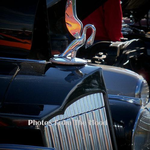 '39 Packard Hood Ornament