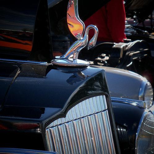1939 Packard Hood Ornament