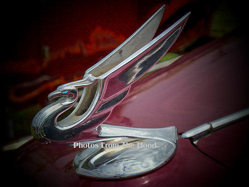 '36 Chevy Hood Ornament