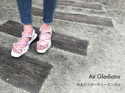 Air gladiator.jpg