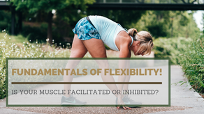 Fundamentals of flexibility!