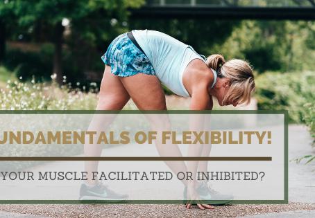 Fundamentals of flexibility!