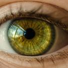 אירידולוגיה-העיניים הן ראי לנפש