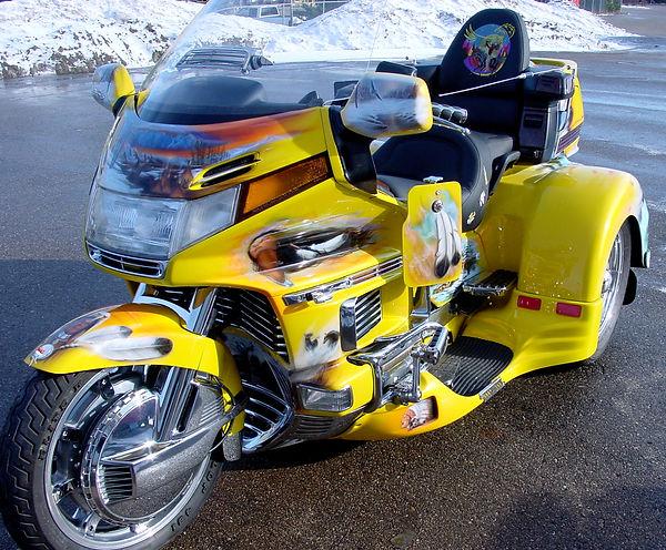 yellowhawk2.jpg