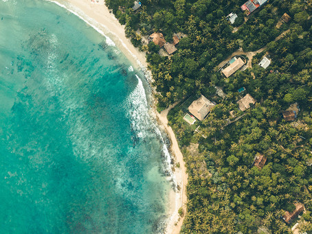 In search of paradise, treehouses, and culture