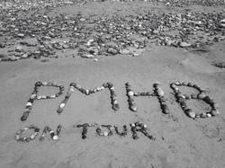 PMHB on tour.jpg