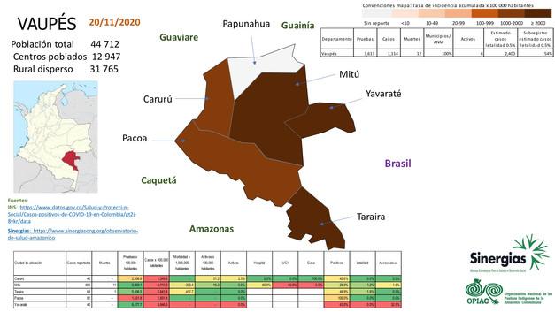Situación del COVID-19 en el departamento de Vaupés a 23 de noviembre del 2020