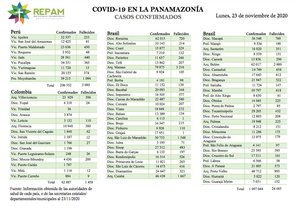 Casos confirmados en la panamazonía - 23/11/20