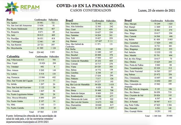Casos confirmados en la panamazonía - 25/01/21
