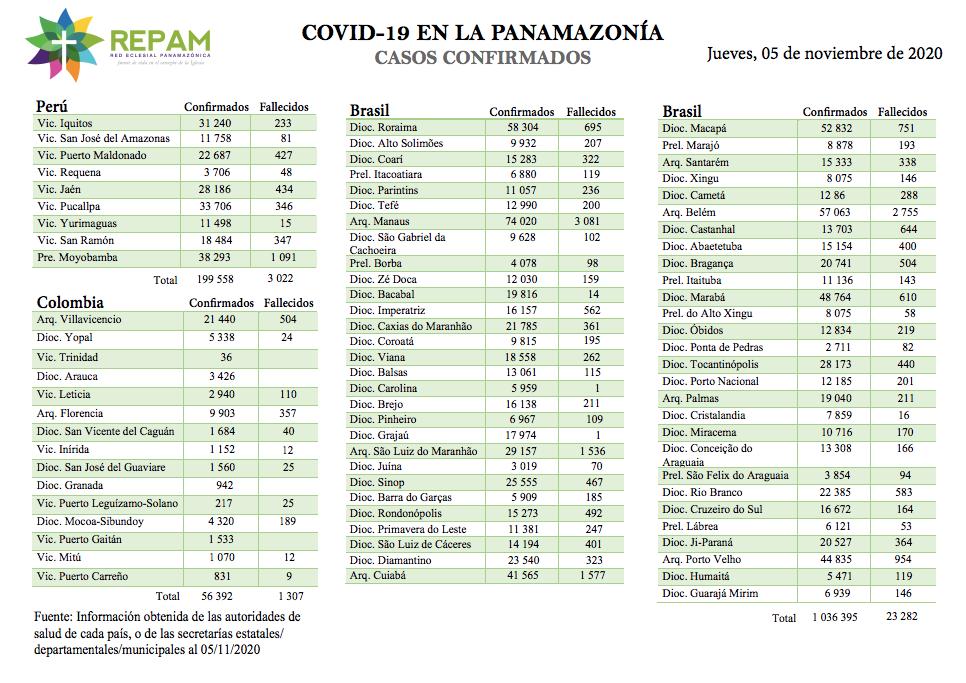 Casos confirmados en la panamazonía - 05/11/20
