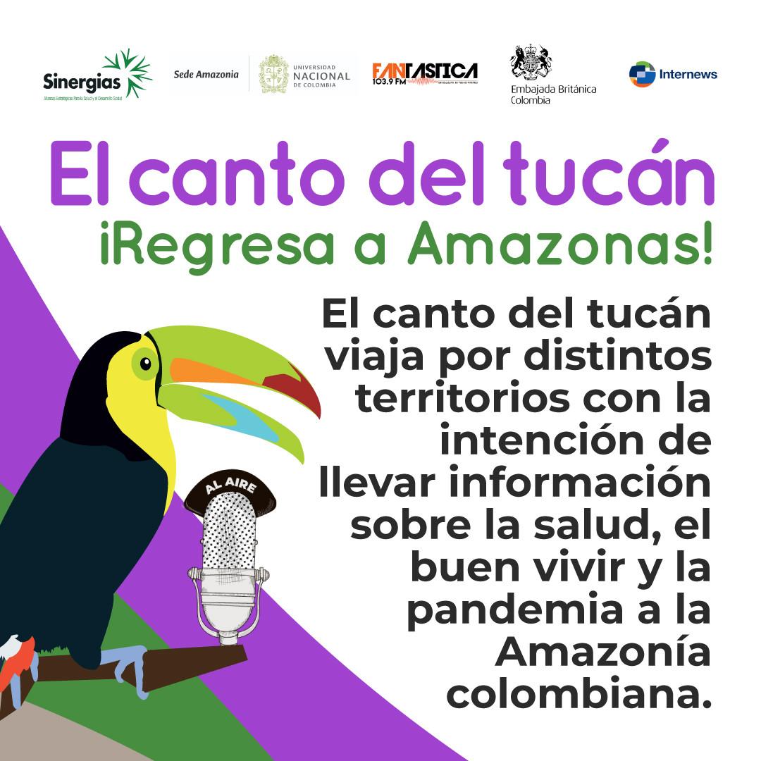 Foto-de-perfil-El-canto-del-tucan-Amazon