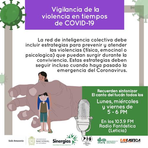 Vigilancia de la violencia en tiempos de COVID-19