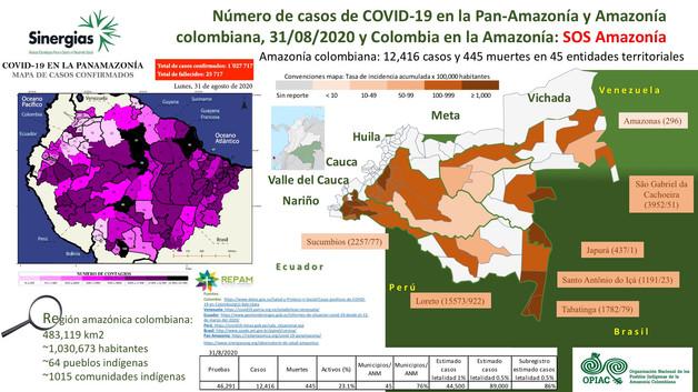 Número de casos de COVID-19 en la Pan-Amazonía y Amazonía colombiana - 31/08/2020