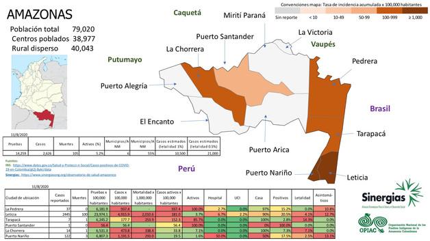 COVID-19 en Amazonas a 11/08/20