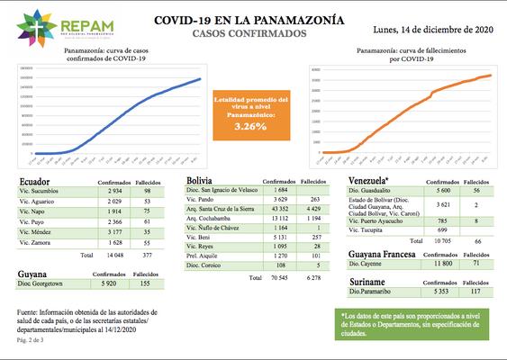Casos confirmados en la panamazonía - 14/12/20