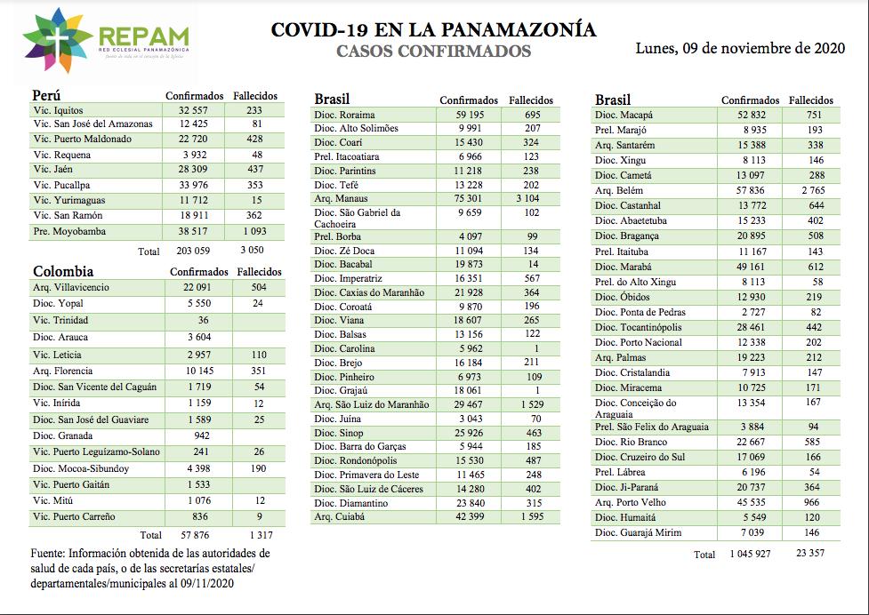 Casos confirmados en la panamazonía - 09/11/20