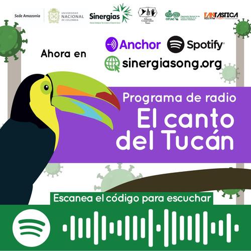 El canto del tucán, disponible en Spotify y Anchor