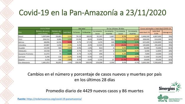 El COVID-19 en la Pan-Amazonía a 23/11/2020