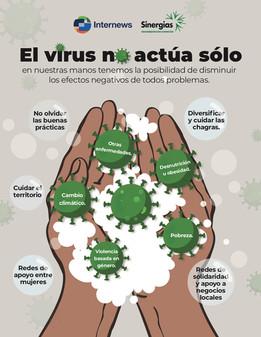 El virus no actúa sólo