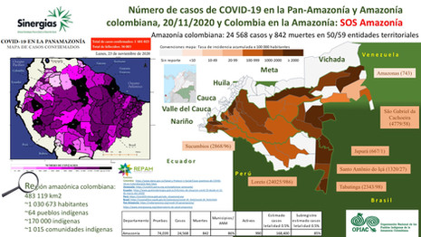 Número de casos de COVID-19 en la Pan-Amazonía y Amazonía colombiana a 23/11/2020