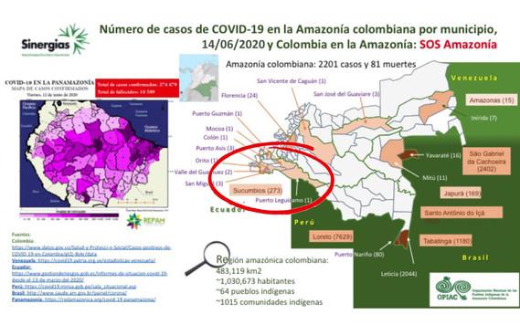 Situación de la región amazónica frente a la pandemia de COVID-19 - 12/06/20